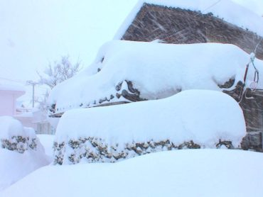 こちらすごい雪です。